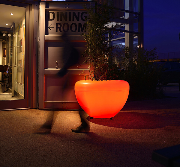 Blomkruka Scoop Light by Manga Street