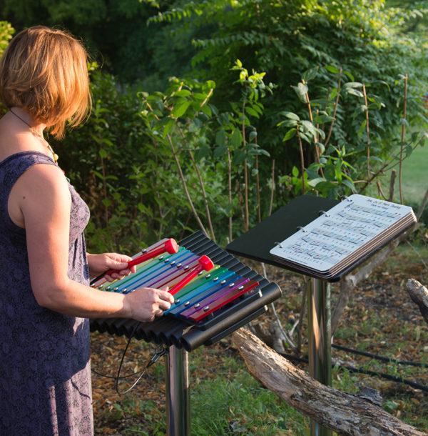 Cavatina musikinstrument - Woodwork AB